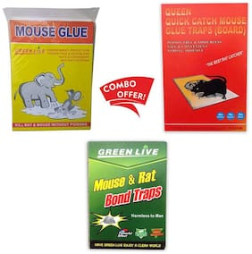Mouse Glue Trap, Combo Rat Glue Boards, Mouse/ Rat Bond Traps- Rat Terminator, Mouse Insect Rodent Lizard Trap Rat Catcher Adhesive Sticky Glue Pad (Mouse Glue Pad)(Combo of 3)