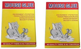 Mouse Rat,Cockroaches Chipkali Insects Trap Adhesive Glue Board Trap Pack of 2