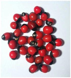 Naeva Natural Red Chirmi Seeds Gunja Seeds Set Of 21 pcs For Puja;Worship;Protection