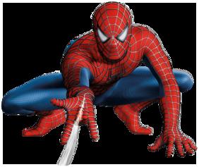 Narayani 300 GSM Matte Multicolor Spiderman Wall Decor Poster