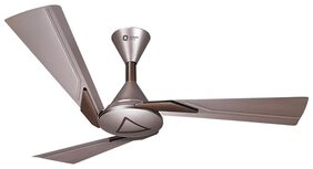 Orient Orina 3 Blades (1200 mm) Ceiling Fan (Copper Brown)