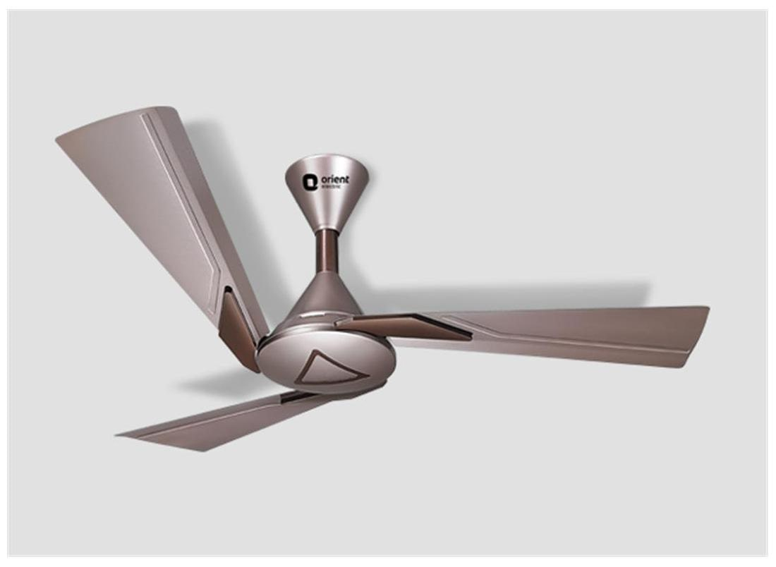 Buy Orient Orina Ceiling Fan Brown Online At Lowest