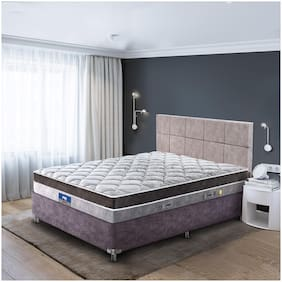 Peps Restonic Ardene Euro Top 08 inch Single Size Pocketed Spring Mattress (Grey, 72X30X08 )