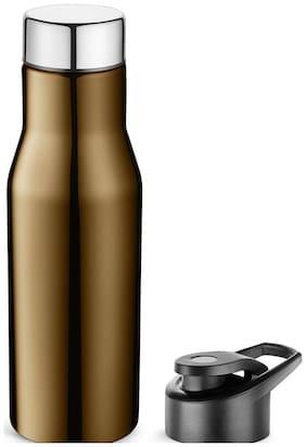 Pexpo 750 ml Stainless Steel Brown Water Bottles - Set of 1