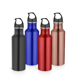 Pexpo 750 ml Stainless steel Assorted Water bottles - Set of 4
