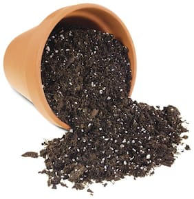 QTH Soil Manure for Plants 900g