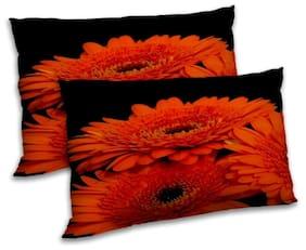 RADANYA Polyester Printed Pillow Covers ( Set of 2 , Black )