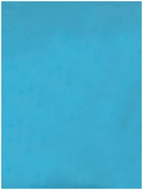 Raymond Home Single Blue Blankets