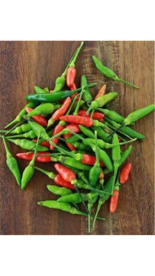 Buy Red Bird Eye Chilli Seeds Kanthari Mulakuthai Peppertiny
