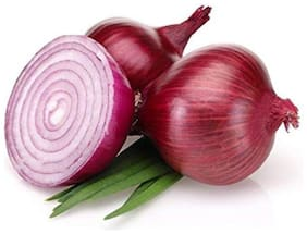 Red Onion vegetable seeds (Pack of 300 Seeds)