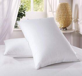 Royce Blend Recron Fiber Pillow white (Pack of 2)