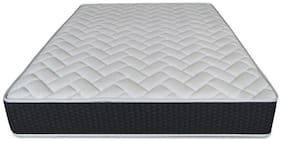 RW REST WELL Premium pocket spring 6 inch Pocket spring Double Mattress