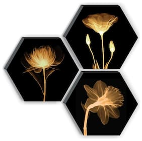SAF Hexagon Preety Brown Flower UV Textured High quality MDF Home Decorative Gift item Painting 17 inch X 17 inch
