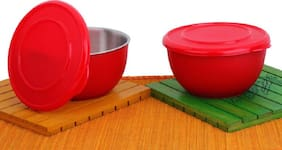 Sayee Micro Stainless Steel Bowl Set (Multicolor, Pack of 2) 17cm
