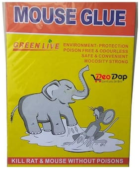 SET of 5 - Mouse Insect Rodent Lizard Trap Rat Catcher Adhesive Sticky Glue Pad - Non Poisonous - Non Toxic - Odourless - Rat Terminator