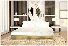SLEEP SPA by COIRFIT 6 inch Latex Single Mattress
