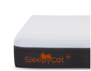 SleepyCat Plus 8 Inch Orthopedic Memory Foam Single Size Mattress (78x36x8 Inches, Gel Memory Foam)
