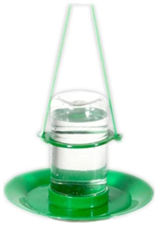 small water feeder
