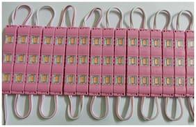 SMD 5630 Pink LED Module Light Waterproof | 20 strip of 3 LED