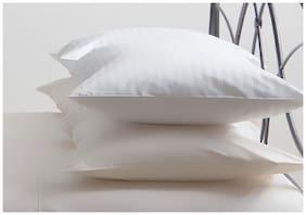 Softtouch Recron Fiber Pillow Set of 2-41x61