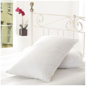Softtouch Recron Fiber Pillow Set of 2-44x60