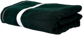 Space Fly Cotton Plain Bath Towels Highly Absorbent, Big Size 28X58 inch (Green_1 Piece)