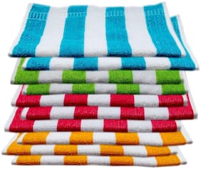 SPACE FLY 250 GSM Cotton Hand Towel ( 10 Pieces , Multi )