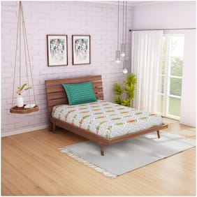 Spaces Cotton Abstract Single Size Bedsheet 144 TC ( 1 Bedsheet With 1 Pillow Covers , Multi )
