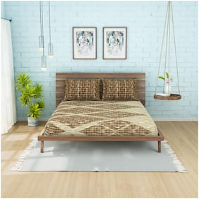 Spaces Cotton Geometric Double Size Bedsheet 210 TC ( 1 Bedsheet With 2 Pillow Covers , Brown & Beige )