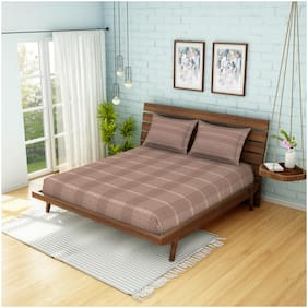 Spaces Cotton Checkered King Size Bedsheet 210 TC ( 1 Bedsheet With 2 Pillow Covers , Brown )