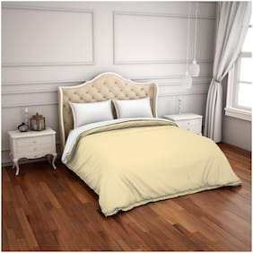 Spaces Hygro Beige Solid 1 Comforter