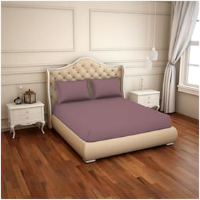 Spaces Cotton Solid King Bedsheet ( 1 Bedsheet with 2 Pillow Covers , Purple )
