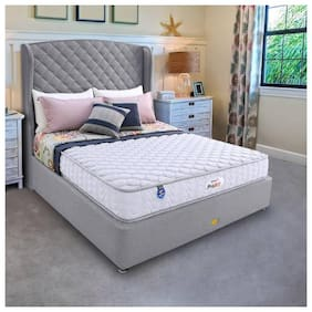 Springfit 4 inch Foam Single Mattress