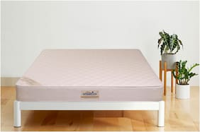 Springtek 4 inches Coir Mattress
