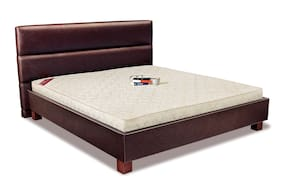 Springwel Gloria Elite Memory Foam 12.7 cm (5 Inches) Bonded Foam Mattress