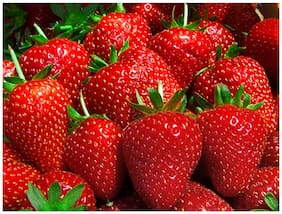 Sweet Strawberry Fragaria Exotic Fruit Seeds Sold By- V Square Retail