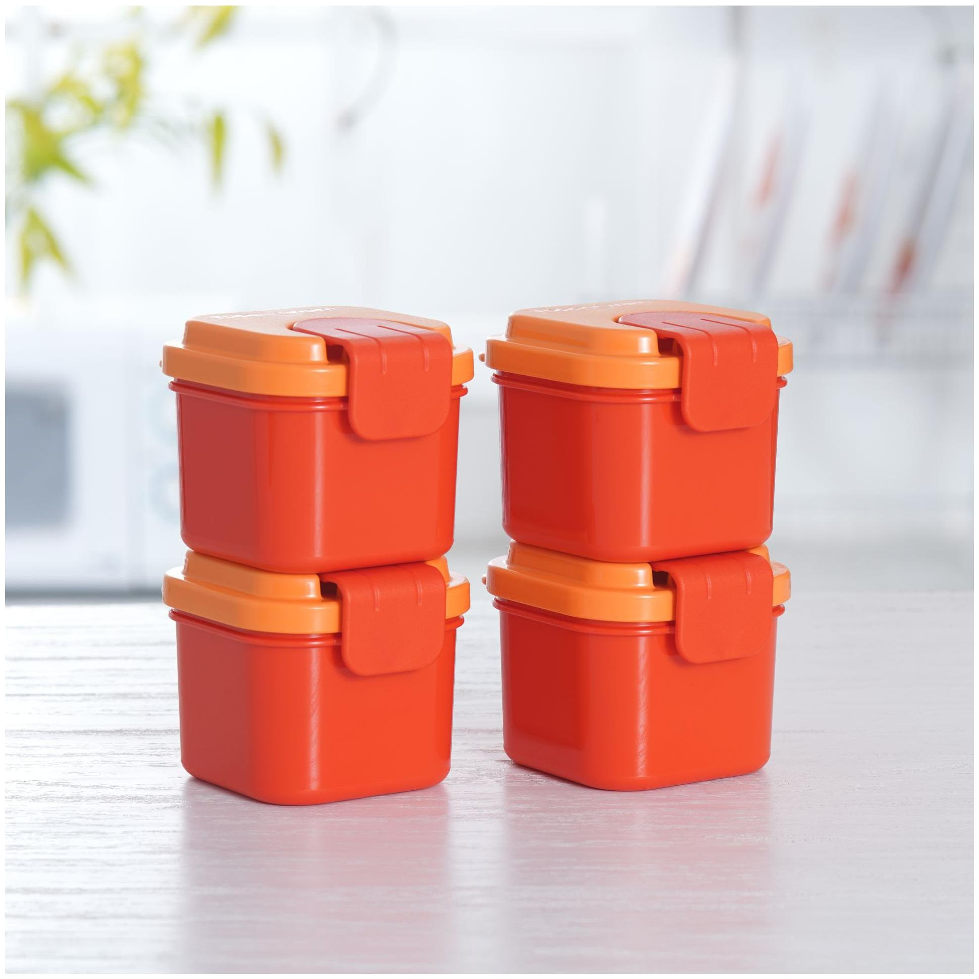 Tupperware 4 Containers Plastic Lunch Box   Orange