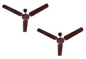USHA Ace Ex 3 Blades (1200 mm) Ceiling Fan (Brown) Pack Of 2