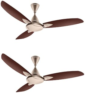 Usha Bloom Primrose 1250 mm 3 Blade Ceiling Fan  (Sparkle Golden And Brown, Pack Of 2)