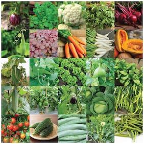 Vegetable Combo Of 45 Varities Pack Of 2500+ Organic & Hybrid Seeds