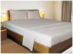 Vissage Cotton Solid King Size Bedsheet ( 1 Bedsheet With 2 Pillow Covers , Beige )