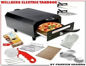 WELLBERG Big Electric Tandoor By Praveen Sharma