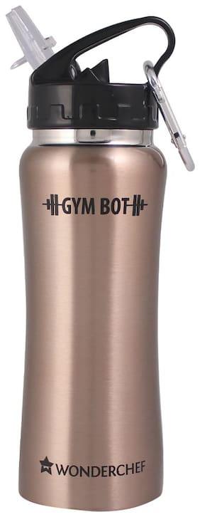 Wonderchef Stainless Steel Brown Water Bottle ( 500 ml , Set of 1 )