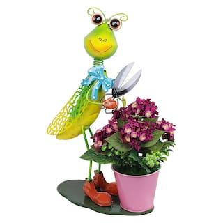 Wonderland Flower Pot Locust with Pot