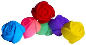 ZIGGY Silicone Assorted Moulds ( Set of 6 )