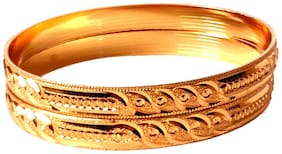 ESG Ever shine Gold Plated Daily Wear Bangles for Women set of 2 pcs.