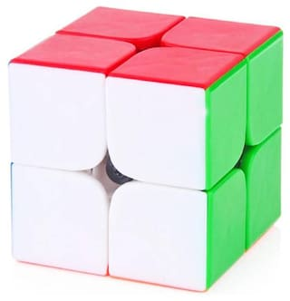 2 x 2 High Speed Stickerless Magic Rubik Cube By Signomark
