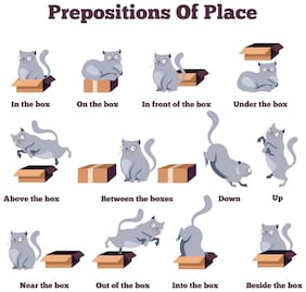 5 Ace Prepositions Of Place Wall Sticker Paper Poster