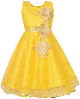 Aarika Girl's Self Design Party Wear Frock