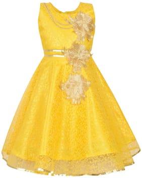 Aarika Baby girl Net Solid Princess frock - Gold